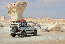 Bahariya Oasis Overday