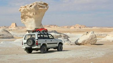 Photo of Bahariya Oasis Overday