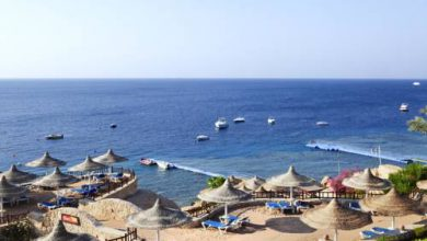 Photo of Hilton Sharks Bay Resort – Sharm El Sheikh