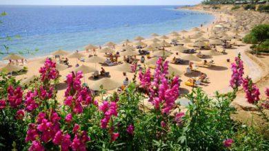 Domina Aquamarine Hotel & Resort – Sharm El Sheikh