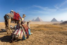 1-Day Giza Pyramids, Sphinx, Memphis and Sakkara
