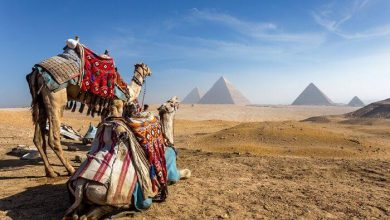 1-Day Giza Pyramids, Sphinx, Memphis and Sakkara