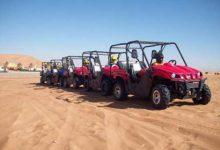 The Treasure of Desert (Siwa Oasis) Safari activity