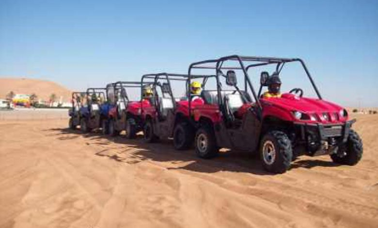 Photo of The Treasure of Desert (Siwa Oasis) Safari activity