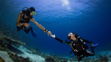 Photo of Learn to Dive in Dahab